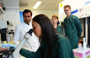 Scientists at Crick examine insides of healthy intestines to check progress made with vegetable diets